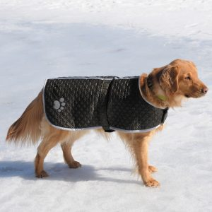 PetEdge ThermaPet Nor'Easters 1